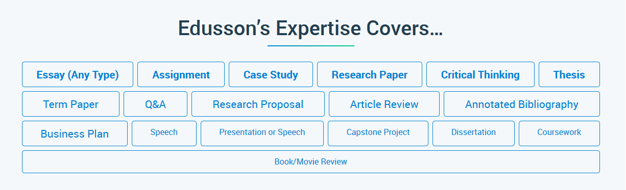 Edusson Services Review